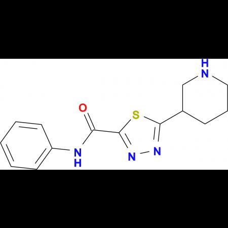 N-Phenyl-5-piperdin-3-yl-1,3,4-thiadiazole-2-carboxamide