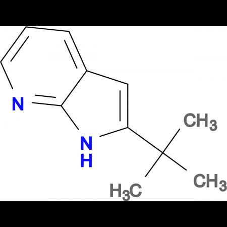 2-tert-Butyl-1H-pyrrolo[2,3-b]pyridine