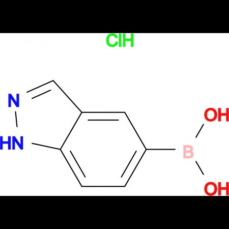 Indazole-5-boronic acid hydrochloride
