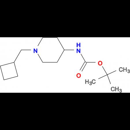 tert-Butyl 1-(cyclobutylmethyl)piperidin-4-ylcarbamate