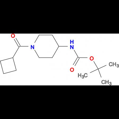 tert-Butyl 1-(cyclobutanecarbonyl)piperidin-4-ylcarbamate
