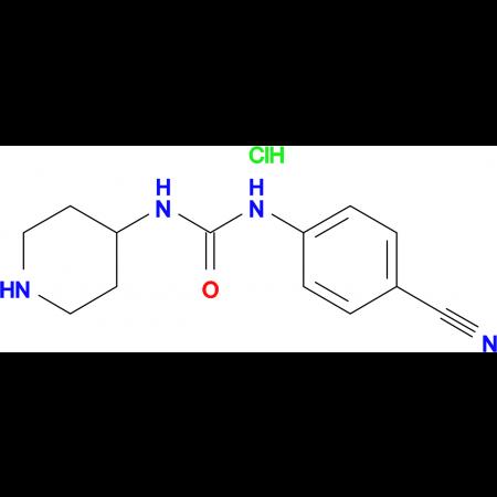 1-(4-Cyanophenyl)-3-piperidin-4-yl-ureahydrochloride