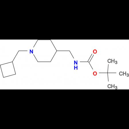 tert-Butyl [1-(cyclobutylmethyl)piperidin-4-yl]methylcarbamate