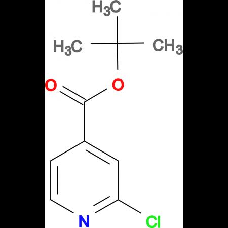 2-Chloro-4-pyridinecarboxylic acid 1,1-dimethyl ethyl ester