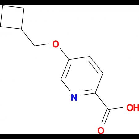 5-(Cyclobutylmethoxy)pyridine-2-carboxylic acid