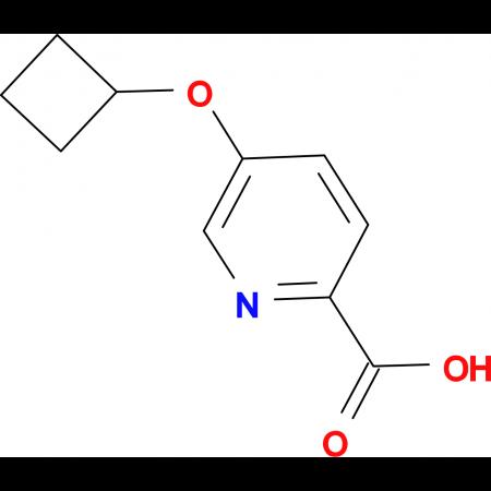 5-Cyclobutoxypyridine-2-carboxylic acid