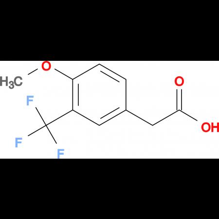 2-(4-Methoxy-3-(trifluoromethyl)phenyl)acetic acid