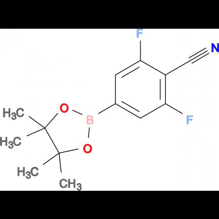 2,6-Difluoro-4-(4,4,5,5-tetramethyl-1,3,2-dioxaborolan-2-yl)benzonitrile