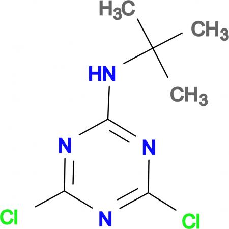 N-(tert-butyl)-4,6-dichloro-1,3,5-triazin-2-amine