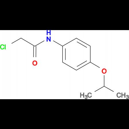 2-chloro-N-(4-isopropoxyphenyl)acetamide