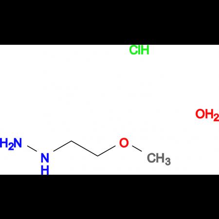 (2-methoxyethyl)hydrazine hydrochloride hydrate