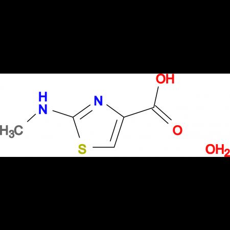 2-(methylamino)-1,3-thiazole-4-carboxylic acid hydrate