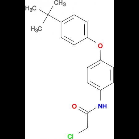 N-[4-(4-tert-butylphenoxy)phenyl]-2-chloroacetamide