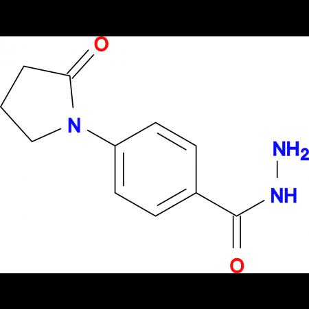 4-(2-oxopyrrolidin-1-yl)benzohydrazide