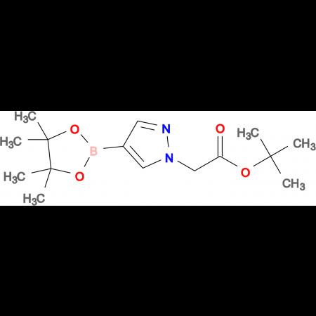 tert-Butyl 2-(4-(4,4,5,5-tetramethyl-1,3,2-dioxaborolan-2-yl)-1H-pyrazol-1-yl)acetate