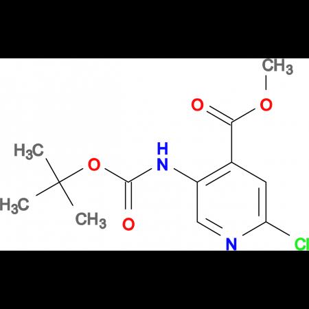METHYL 5-(BOC-AMINO)-2-CHLOROPYRIDINE-4-CARBOXYLATE