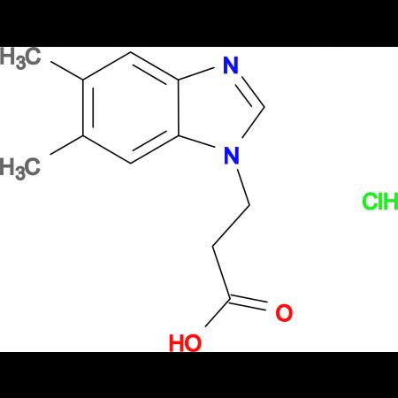 3-(5,6-Dimethyl-1H-benzimidazol-1-yl)propanoic acid hydrochloride