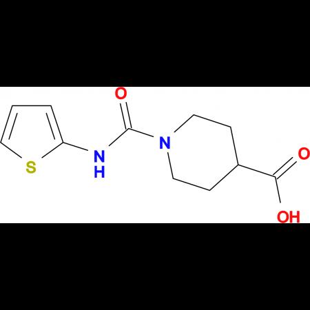 1-[(2-thienylamino)carbonyl]piperidine-4-carboxylic acid