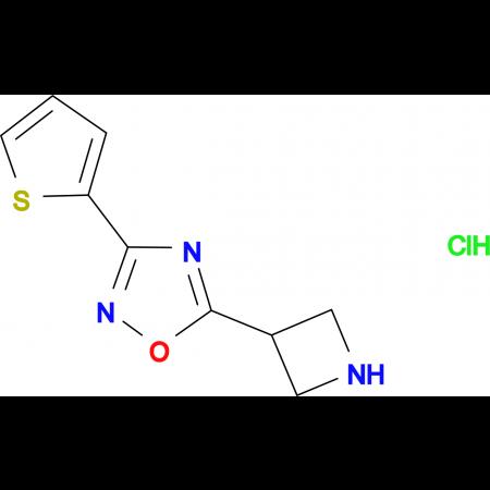 5-azetidin-3-yl-3-(2-thienyl)-1,2,4-oxadiazole hydrochloride