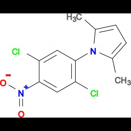 1-(2,5-dichloro-4-nitrophenyl)-2,5-dimethyl-1H-pyrrole
