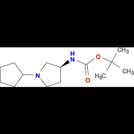 (S)-tert-Butyl 1-cyclopentylpyrrolidin-3-ylcarbamate