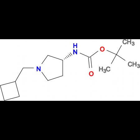 (R)-tert-Butyl 1-(cyclobutylmethyl)pyrrolidin-3-ylcarbamate