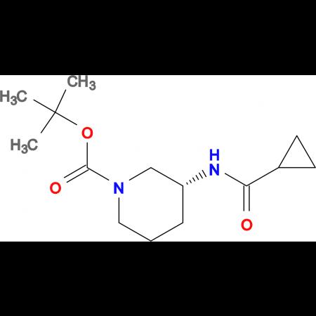 (R)-tert-Butyl 3-cyclopropaneamidopiperidine-1-carboxylate