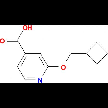 2-(Cyclobutylmethoxy)isonicotinic acid