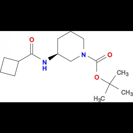 (S)-tert-Butyl 3-cyclobutaneamidopiperidine-1-carboxylate