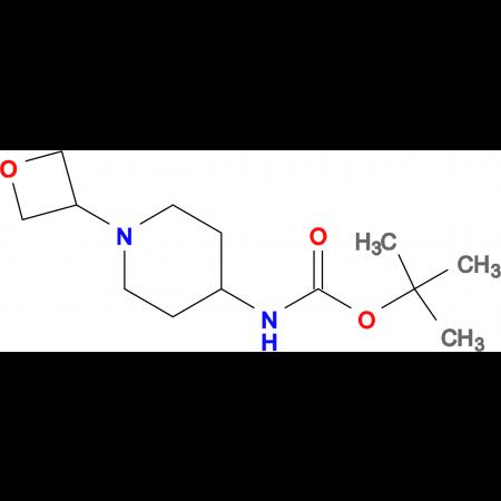 tert-Butyl 1-(oxetan-3-yl)piperidin-4-yl carbamate