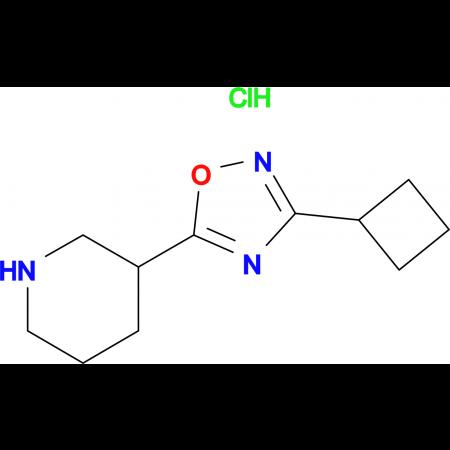 3-(3-Cyclobutyl-1,2,4-oxadiazol-5-yl)piperidine hydrochloride