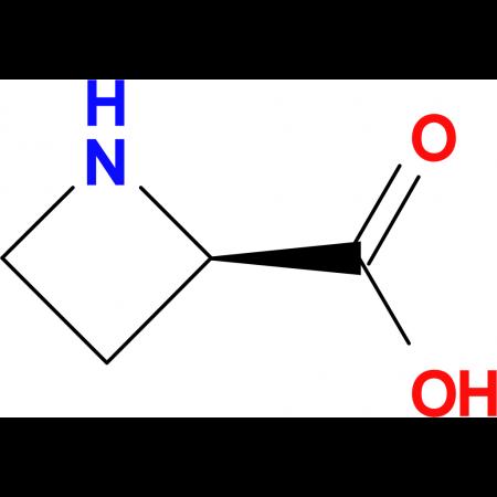 (R)-Azetidine-2-carboxylic acid