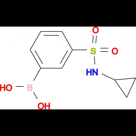 (3-(N-Cyclopropylsulfamoyl)phenyl)boronic acid
