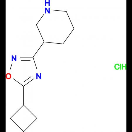 3-(5-Cyclobutyl-1,2,4-oxadiazol-3-yl)piperidine hydrochloride