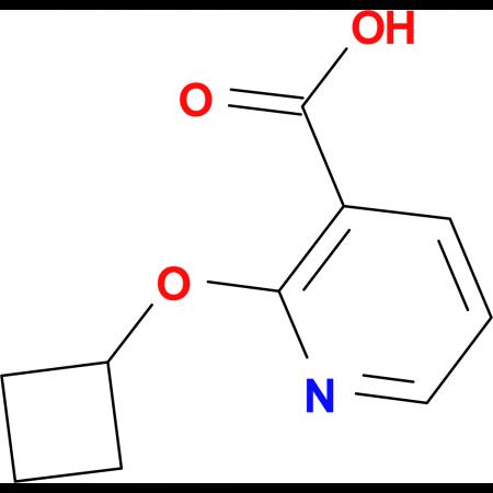 2-Cyclobutoxypyridine-3-carboxylic acid