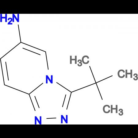 3-tert-Butyl-[1,2,4]triazolo[4,3-a]pyridin-6-amine