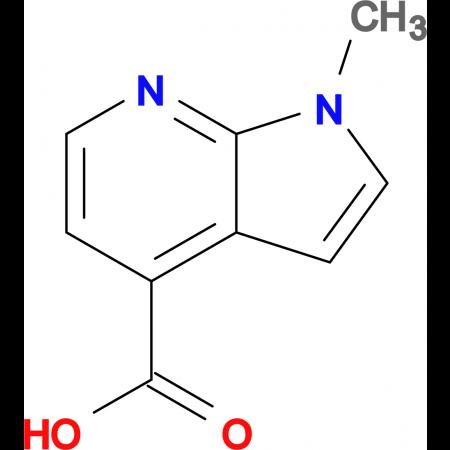 1-Methyl-7-azaindole-4-carboxylic acid