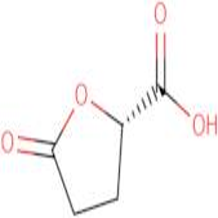 (S)-5-Oxo-tetrahydrofuran-2-carboxylic acid