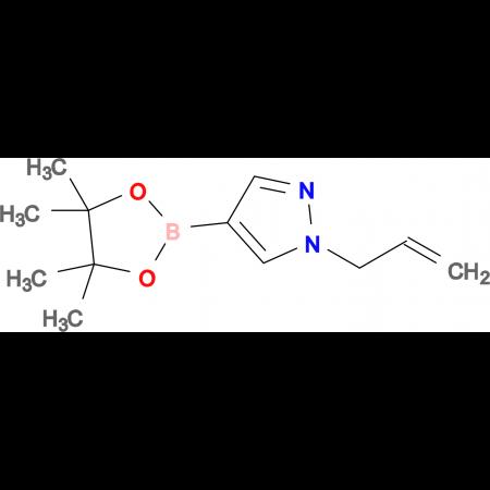 1-(2-Propen-1-yl)-4-(4,4,5,5-tetramethyl-1,3,2-dioxaborolan-2-yl)-1H-pyrazole