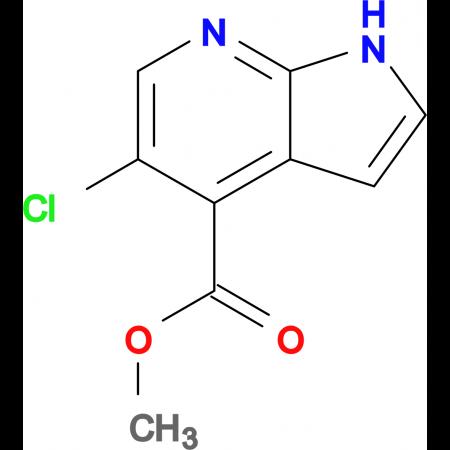 Methyl 5-chloro-1H-pyrrolo[2,3-b]pyridine-4-carboxylate