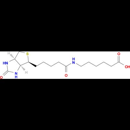 6-(5-((3aS,4S,6aR)-2-Oxohexahydro-1H-thieno[3,4-d]imidazol-4-yl)pentanamido)hexanoic acid