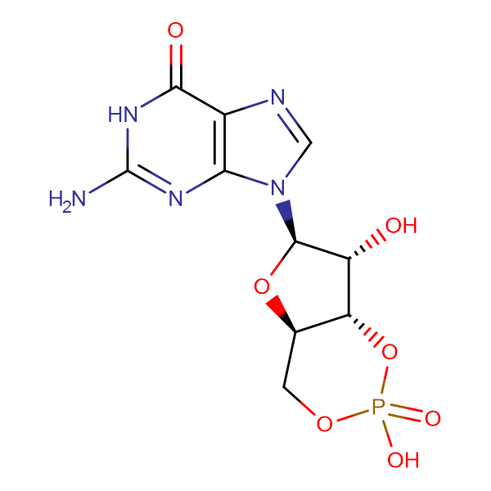 Guanosine 3',5'-monophosphate