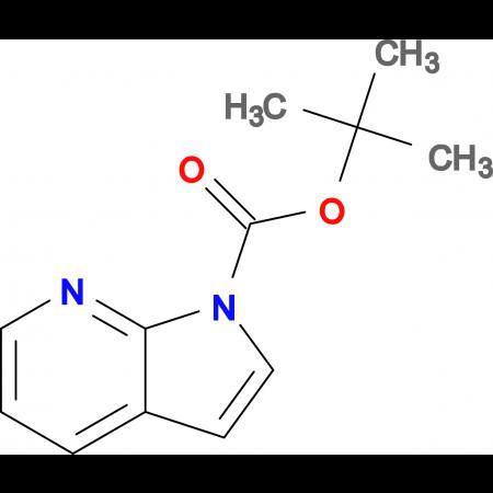 tert-Butyl 1H-pyrrolo[2,3-b]pyridine-1-carboxylate