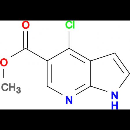 Methyl 4-chloro-1H-pyrrolo[2,3-b]pyridine-5-carboxylate
