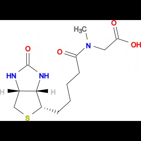 (+)-Biotin-sarcosine