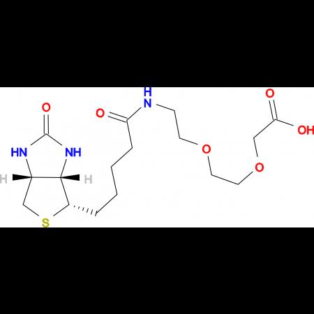 Biotinyl-8-amino-3,6-dioxaoctanoic acid