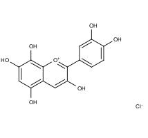 Gossypetinidin chloride