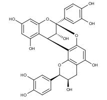 Procyanidin A2