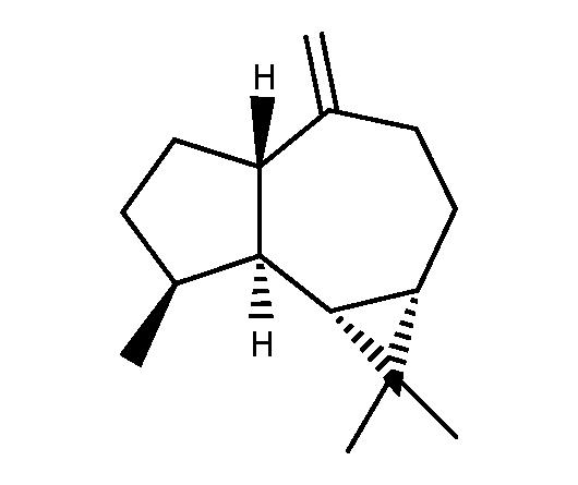 (+)-Aromadendrene