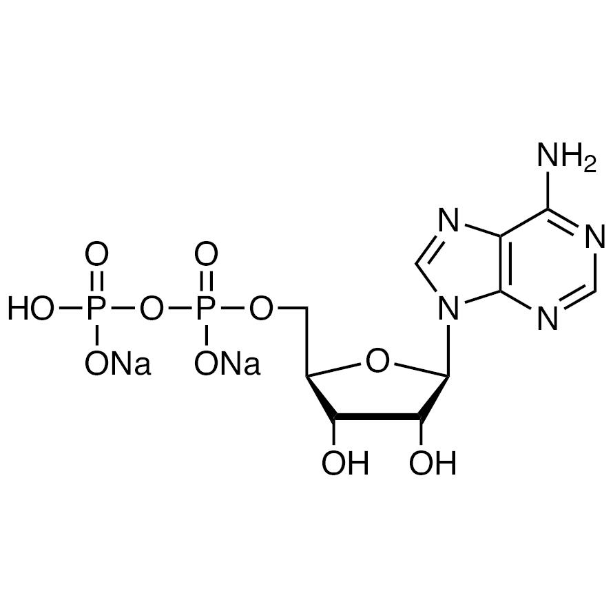 Adenosine 5'-Diphosphate Disodium Salt